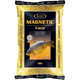 Magnetic - Carp Big 2kg